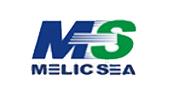 内蒙古蒙西高新技术集团公司